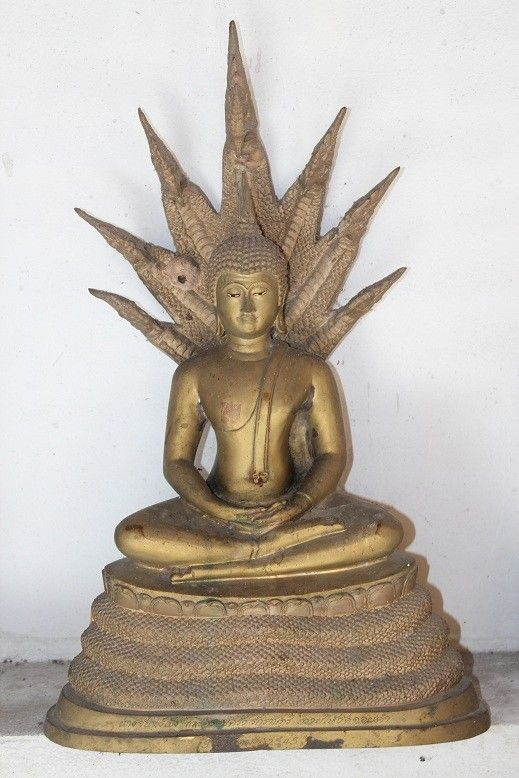 Bouddha Du Samedi